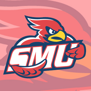 Men's College Basketball: Saint Mary's vs. Viterbo (Dec. 20, 2014)